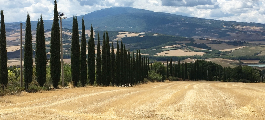 View of Tuscany and Tuscan Trees