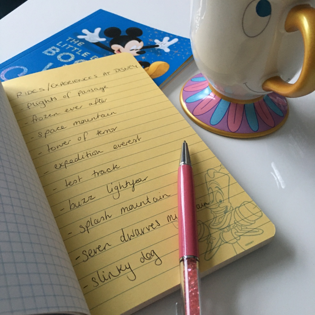 Disney holiday ride planning, Chip mug