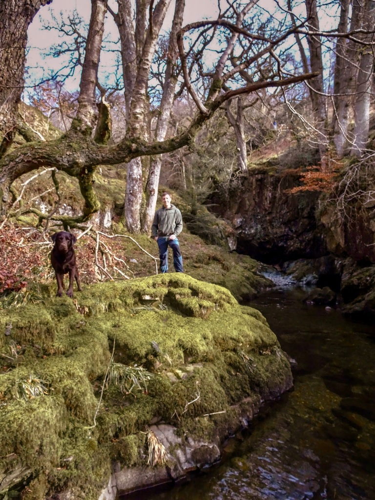 Aira Force National Trust Lake District Troutbeck Dog Walks