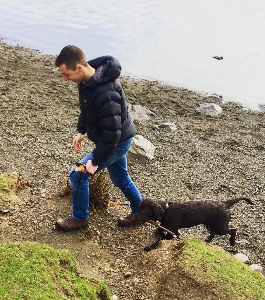 Lake Windermere, Lake District Dog Walks